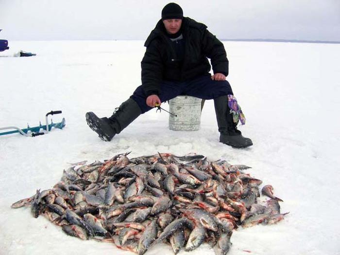 на рыбалке фото мужчин